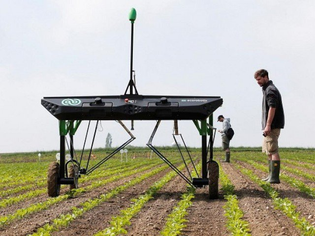 Robots can replace pesticides in AI revolution