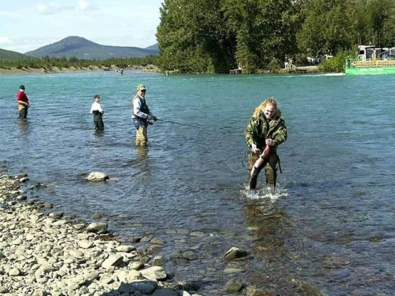 امریکا میں دریا سے بدصورت مچھلی پکڑنے کا مقابلہ